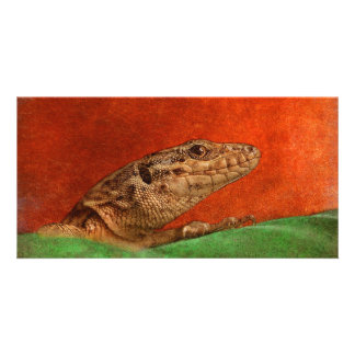 Painted Lizard Card