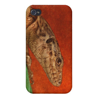 Painted Lizard iPhone 4/4S Cover