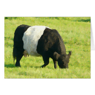 Painted Look Belted Galloway Cow in Field Card