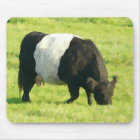Painted Look Belted Galloway Cow in Field Mouse Pad