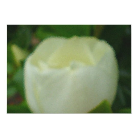 Painted Magnolia Card