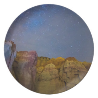 Painted Night Melamine Plate