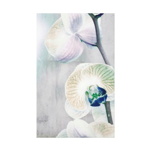 Painted Orchid Canvas Canvas Print