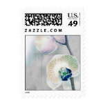 Painted Orchid Postage