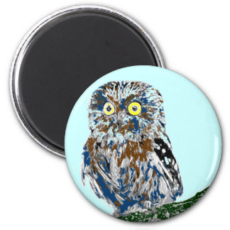 Painted owl magnet