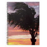 Painted Palm Sunset Note Books