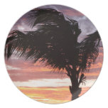Painted Palm Sunset Plate