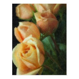 Painted Peach Roses Postcard