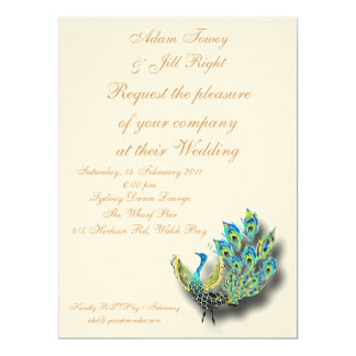 Painted peacock invite