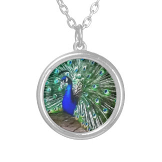 painted peacock round pendant necklace