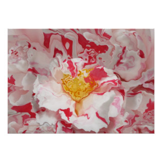 Painted Pink Camellia Abstract Art Print