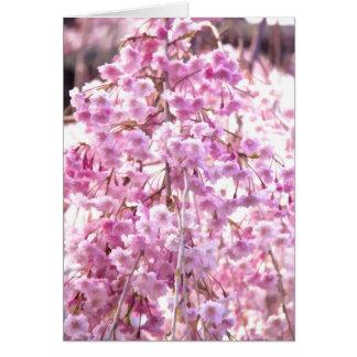 Painted Pink Weeping Willow Flowering Tree Card