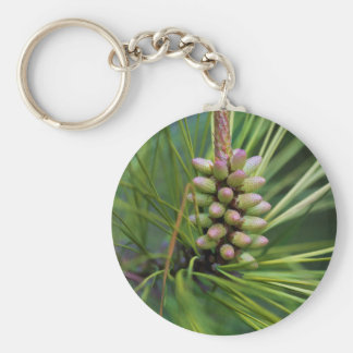 Painted Ponderosa Pine New Growth Basic Round Button Keychain