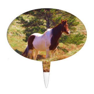 Painted Pony  by the Pine Cake Topper