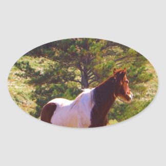 Painted Pony  by the Pine Oval Sticker