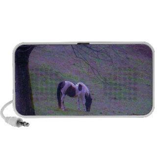 Painted Pony , horse in a purple aqua field Portable Speaker
