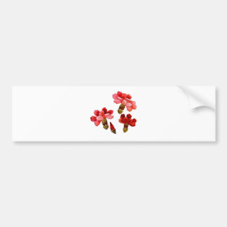 Painted Red & Pink Carnations Bumper Sticker