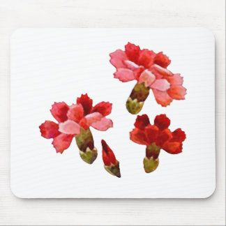 Painted Red & Pink Carnations Mouse Pad