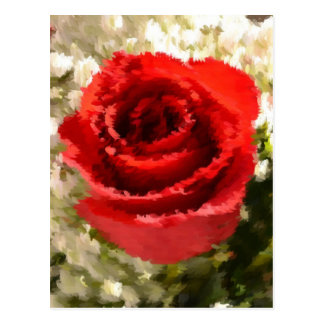 Painted Red Rose Postcard