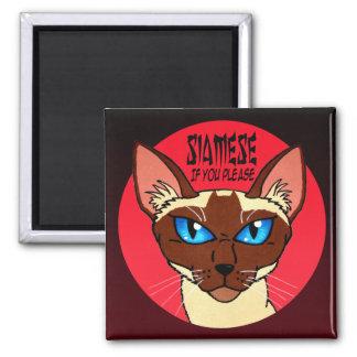 Painted Siamese Cartoon Magnet