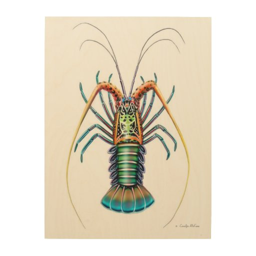 Large Lobster Wall Decor : Painted spiny lobster wood wall art zazzle
