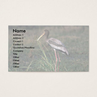 Painted Stork Business Card