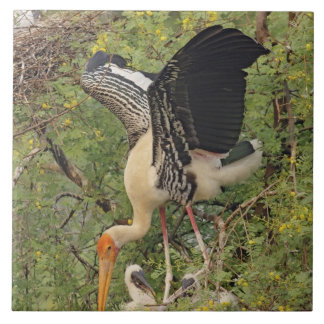 Painted Stork & youngones,Keoladeo National Ceramic Tile