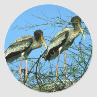 Painted Storks in nest Classic Round Sticker