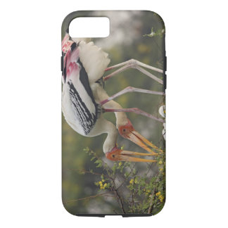 Painted Storks & youn one at nest,Keoladeo iPhone 8/7 Case