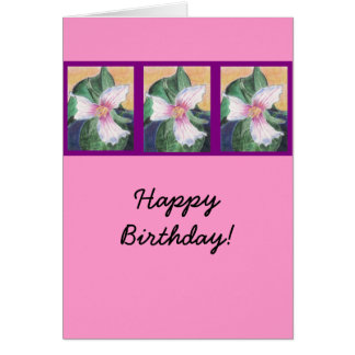 Painted Trillium Greeting Cards
