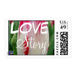 Painted Tulip Postage Stamp