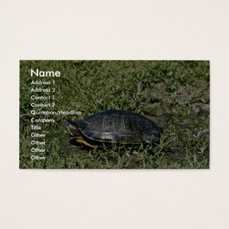 Painted Turtle Business Card