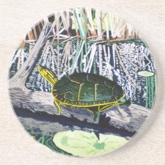 Painted Turtle Coaster