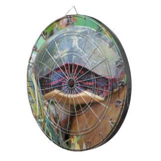 Painted Turtle Hiding Dartboard With Darts