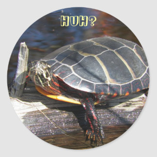 Painted Turtle Stickers