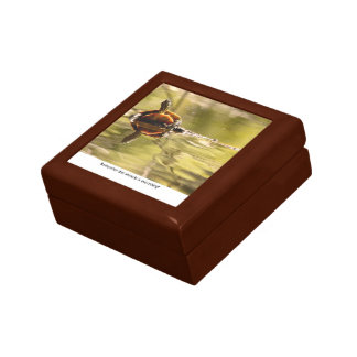 Painted Turtle with Attitude Jewelry Boxes