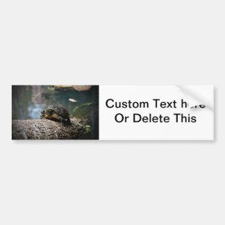 painted water turtle climbing log bumper sticker