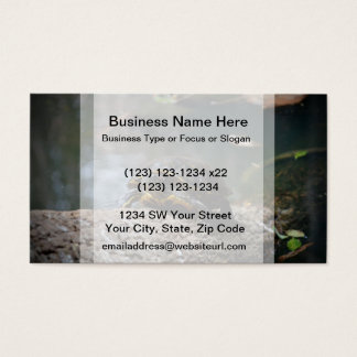 painted water turtle climbing log business card