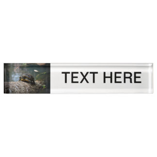 painted water turtle climbing log name plate