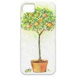 Painted watercolor citrus tree in pot iPhone 5 covers