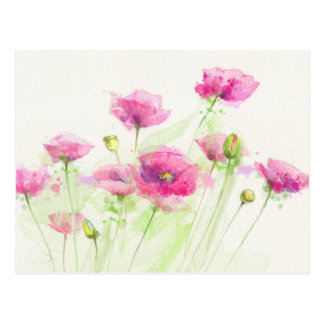 Painted watercolor poppies 3 postcard