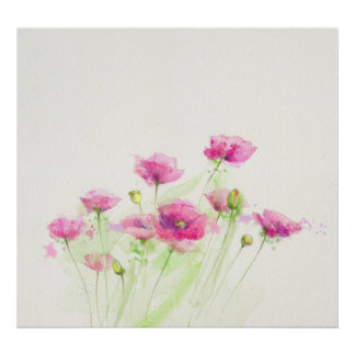 Painted watercolor poppies 3 poster
