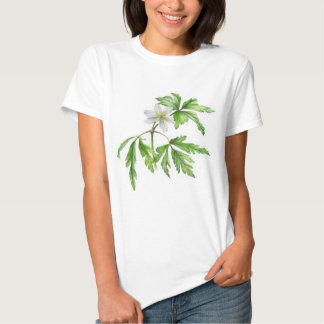 Painted wood anemone fine art t-shirt
