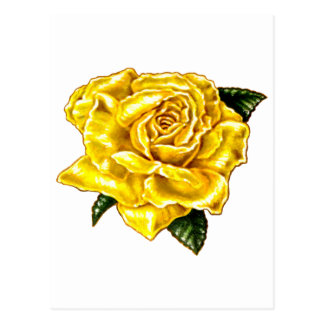 Painted Yellow Rose Postcard