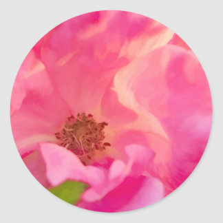Painterly Abstract Pink Knockout Rose Classic Round Sticker