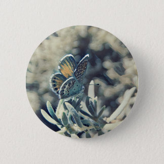 Painterly Butterfly Button