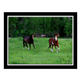 Painterly horse photo poster