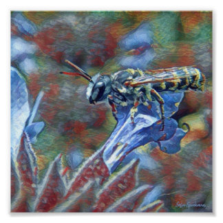 Painterly Leafcutter Bee 7x7 Canvas Poster Print