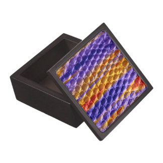 Painting colorful art graphic design gift box