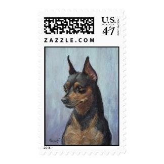 Painting Miniature Pinscher Post Postage Stamp